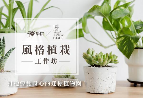 【50+學院x巧偶花藝】風格植栽工作坊:向植物學習陪伴自己