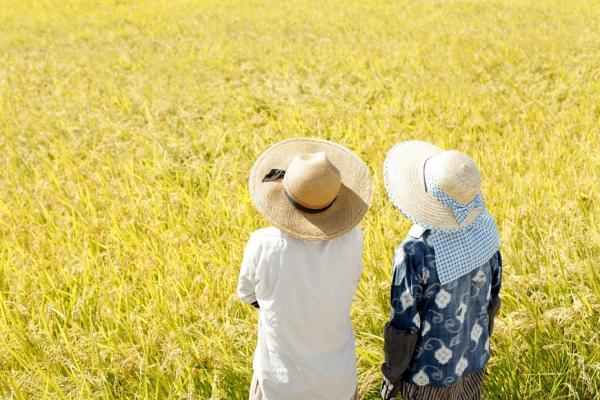 如何避免孤獨的老後?日本研究:要和歐巴桑學!