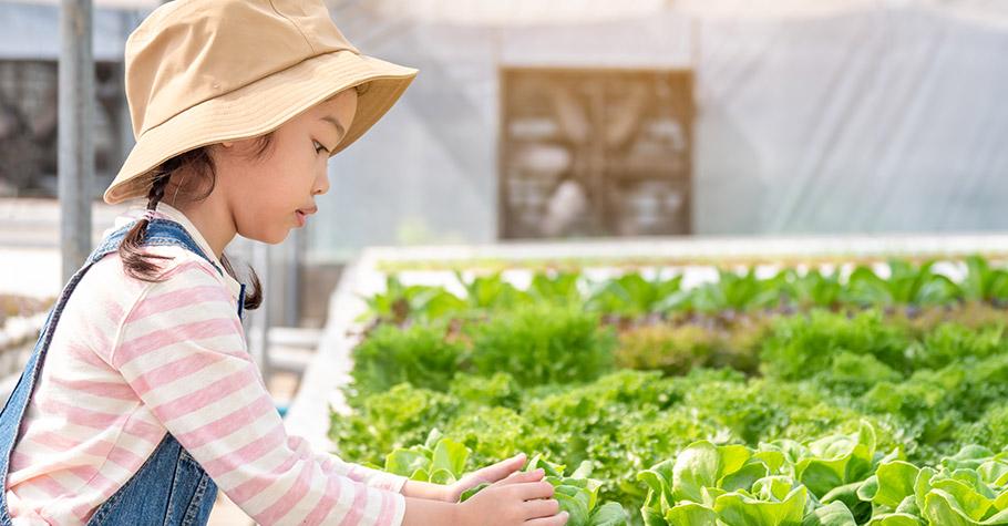 和食材的第一次親密接觸!食農教育串連產地到餐桌,好好吃飯從小教起