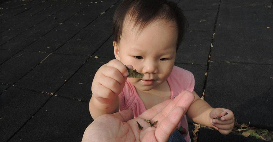 育兒過程雖然辛苦,卻是一生最珍貴的回憶