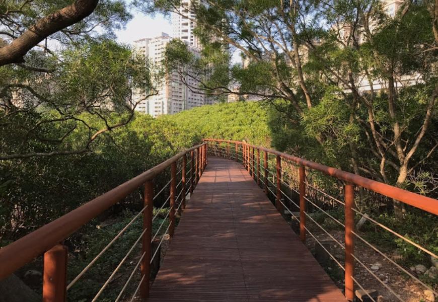 輕鬆好走景色優美!不太需要爬階梯,台灣4條步道推薦