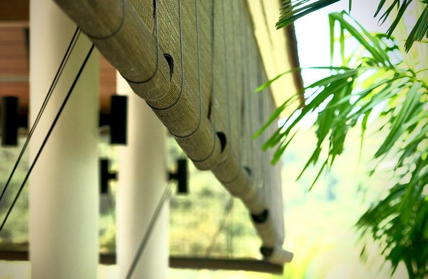 如何少開冷氣?建築師傳授:把窗簾掛窗外,電費節省38%