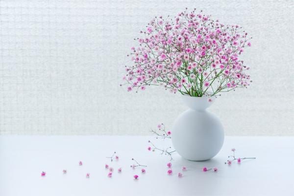 26%女性更年期痛苦超過5年!養成7習慣,留住優雅自在