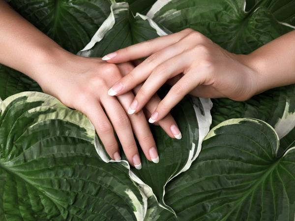 手比臉更易老化!日專家:洗手完做3件事,讓手的視覺減齡