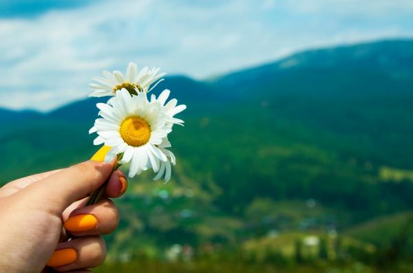 彭樹君專欄|愛的藝術是放手!不擔憂他人的人生,才有能量活出自己
