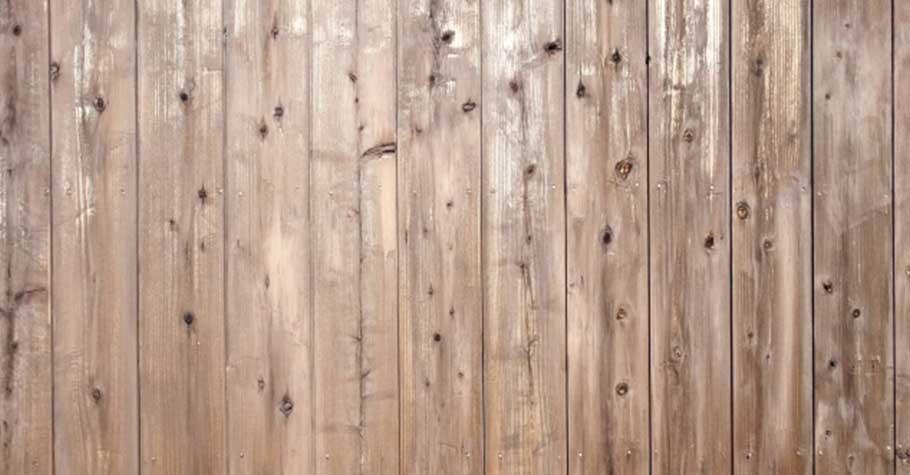 木牆上的釘痕》張曼娟:脾氣不好,無法自我控制,實在不算是個完整的人