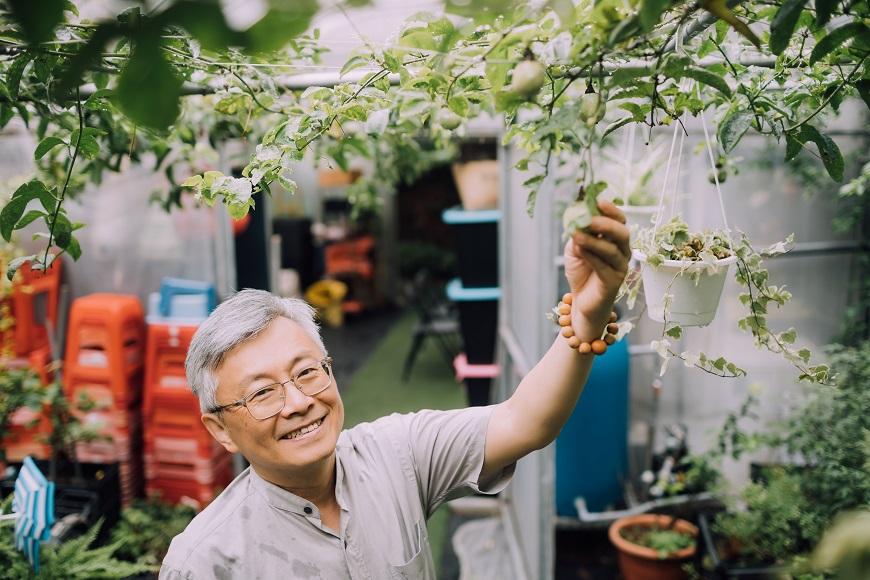 閒置頂樓變菜園,社會企業「樂農生活」雇50+幫退休族圓田園夢