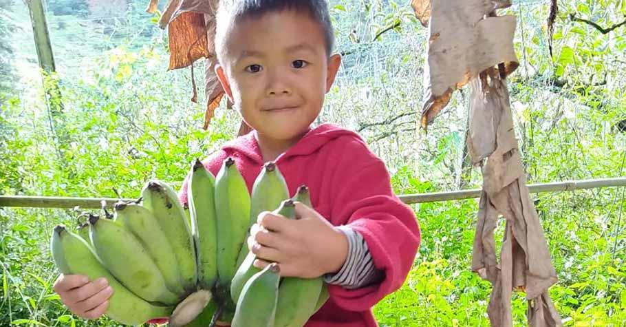 如果孩子能透過認識食物懂得「粒粒皆辛苦」,他們將更懂得珍惜身邊所擁有的一切