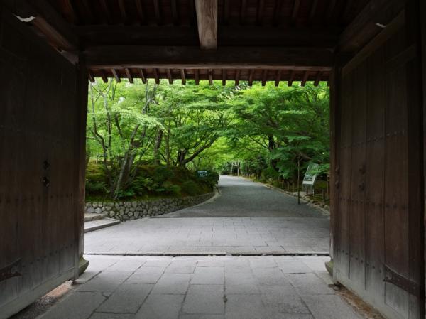 日本退休新現象:老後出家!不是職業,而是新自我的生活之道