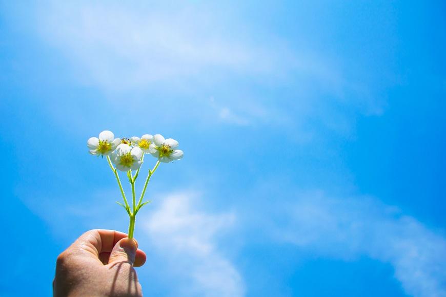 彭樹君專欄|中年後善待自我的智慧:世界也許為難你,但我們可以放過自己
