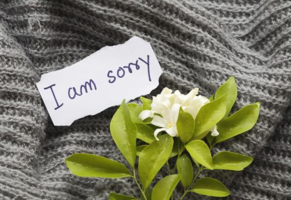 怎麼道歉讓對方感受較好?脫不花:把關係導向未來,避免對方留下壞印象的4原則