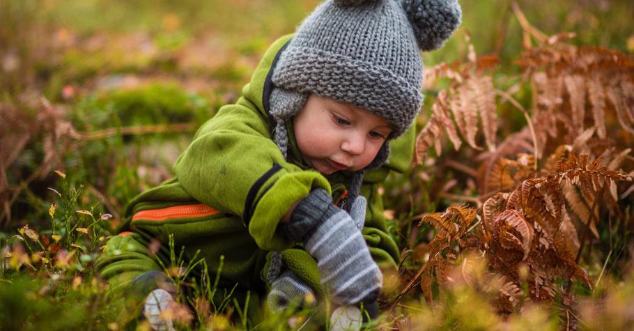 養成孩子好奇心、探究力,就帶孩子走進自然認識周遭生物