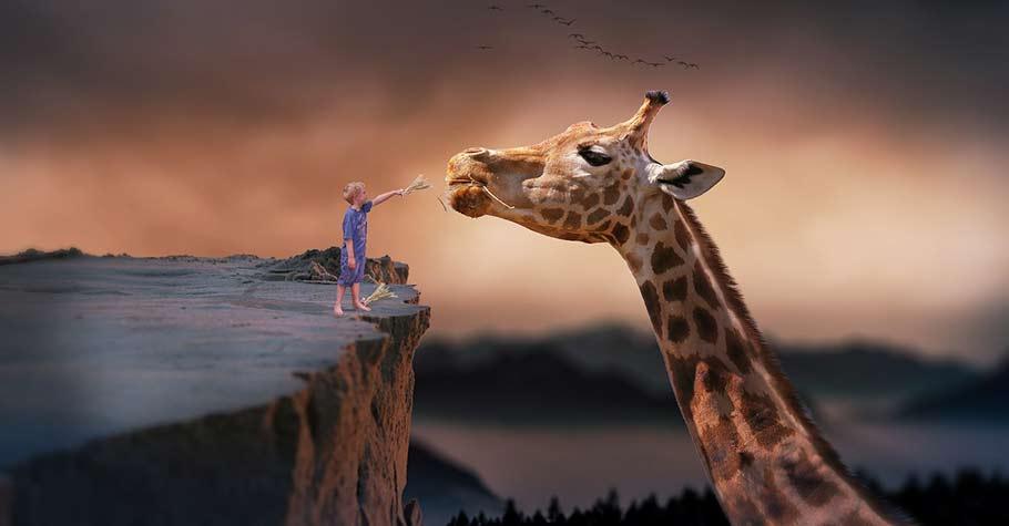 孩子的想像力就是他的超能力!讓我們陪著孩子來一趟奇幻之旅,激發他的創造力