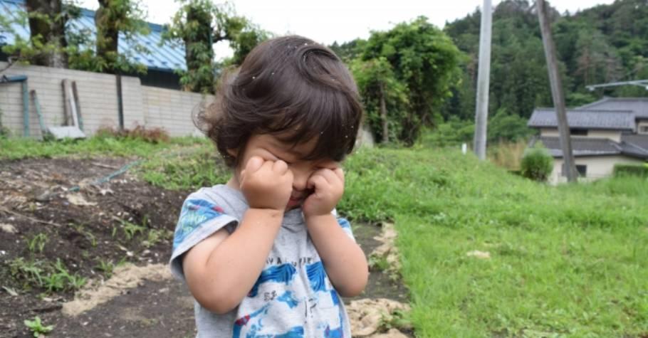 孩子丟三落四,父母立刻幫忙找?!專家:過度同情孩子當下的遭遇,可能使孩子的未來變得更需要同情