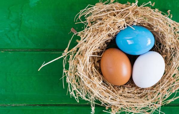 和年輕時不同,保險留最重要的!50歲後必要的3種保險