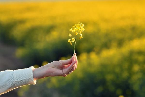 杜丞蕓專欄|如何改善大小毛病不斷?養身先養心,2方法重建身心秩序