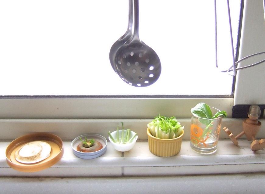 自己種菜最健康,可是沒有地?在家裡就能做的「水杯種菜法」