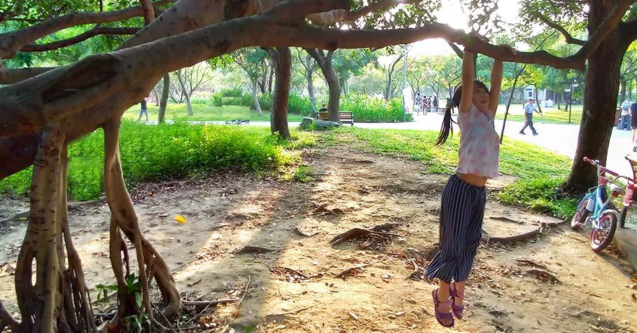 激發孩子想像力不需要多了不起的教具,只要觀察樹木就可以!