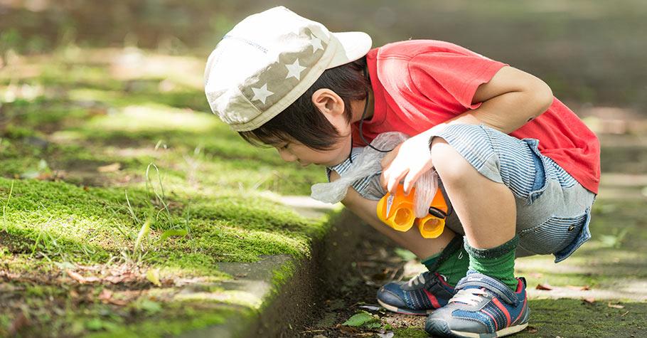 對孩子來說,「觀察力」就像是一把鑰匙,促進孩子的想像力和思維能力,成為一個更加成功優秀的人