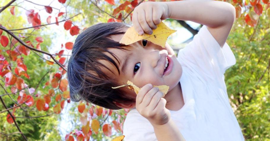 安定教養,是陪著孩子感受愛與情緒變化的歷程,只有穩定的大人,才能真正搞定成長中的孩子