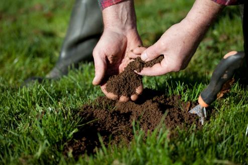 土療正盛!多碰泥土 對身體有哪些幫助?