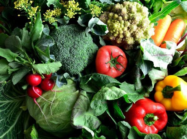 冬季打造防空汙體質!營養師:3類蔬果養肺最有效