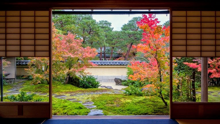 【梁旅珠專欄】蟬聯16年日本第一庭園!「足立美術館」的楓紅與動畫框景