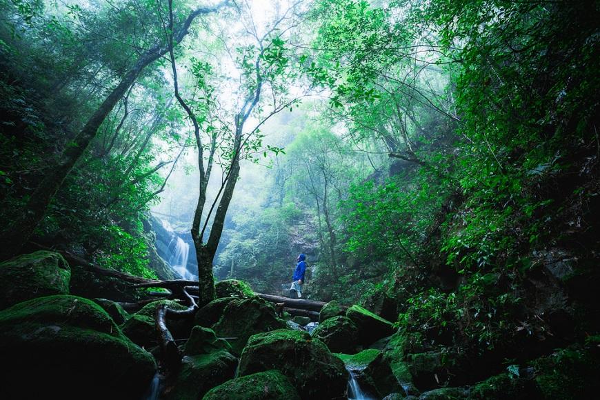 日本農林水產部研究:50歲後,為何每月應至少爬山一次?