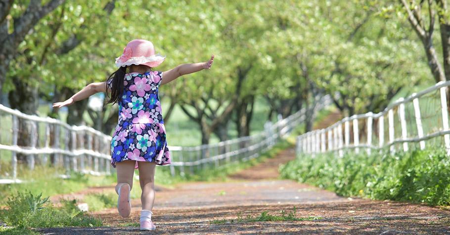 綠色是撫慰的顏色,用大自然的寧靜與美,陶冶孩子的身心靈,使孩子的心胸寬大不再為小事傷心發脾氣