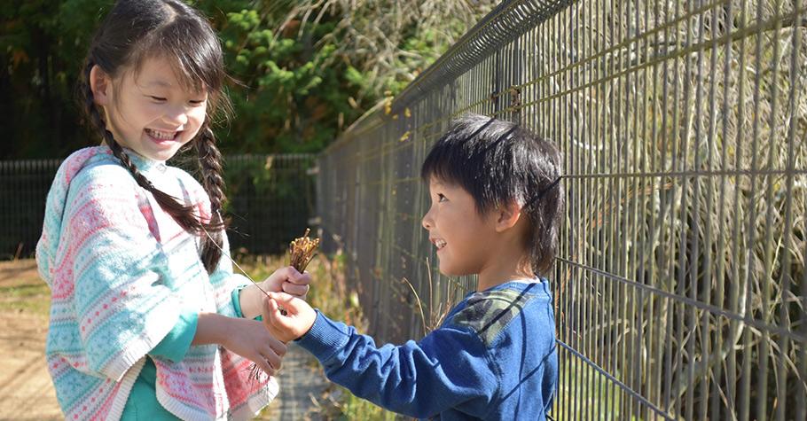 給孩子一個引子,而不是一個答案,他便能體驗整個探索過程