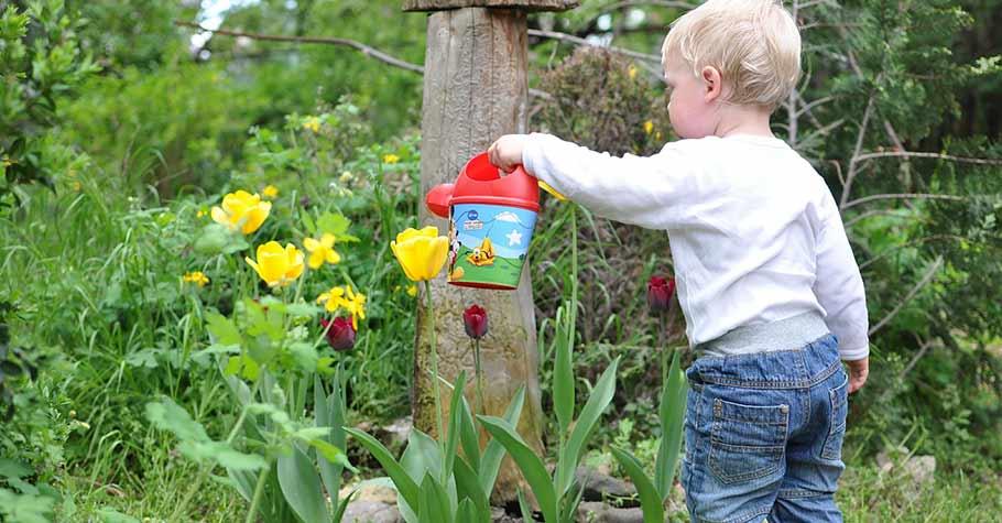 樹在生活中無所不在,但不是理所當然,帶著孩子一起更加了解樹,並從小養成珍惜資源的好習慣