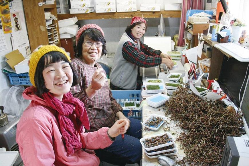 因太健康而讓安養院倒閉的小鎮!日本上勝町:動了點「手腳」,生命就不同