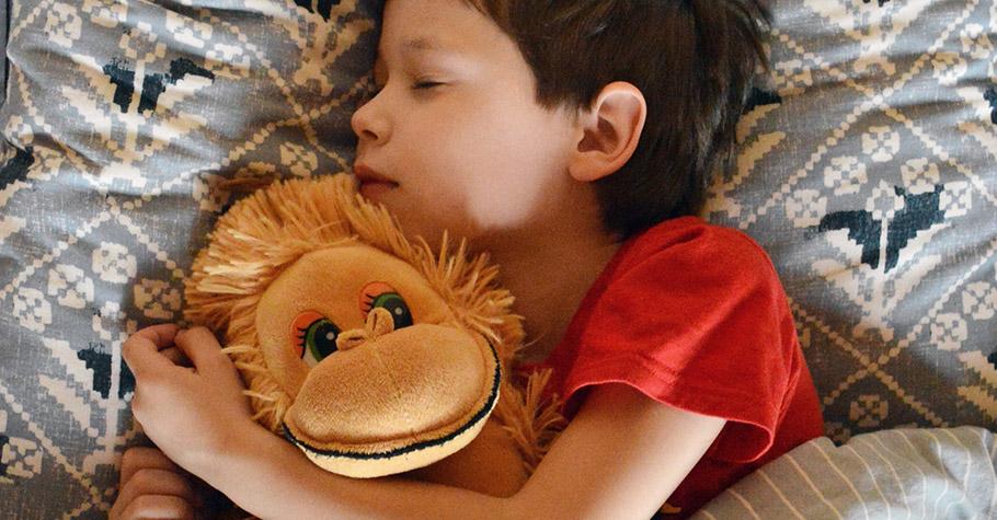 貼心的孩子來自我們如何回應他們的傷心》大腦─情緒─行為研究,環境是能夠型塑及改變行為的,同理心6個實用法
