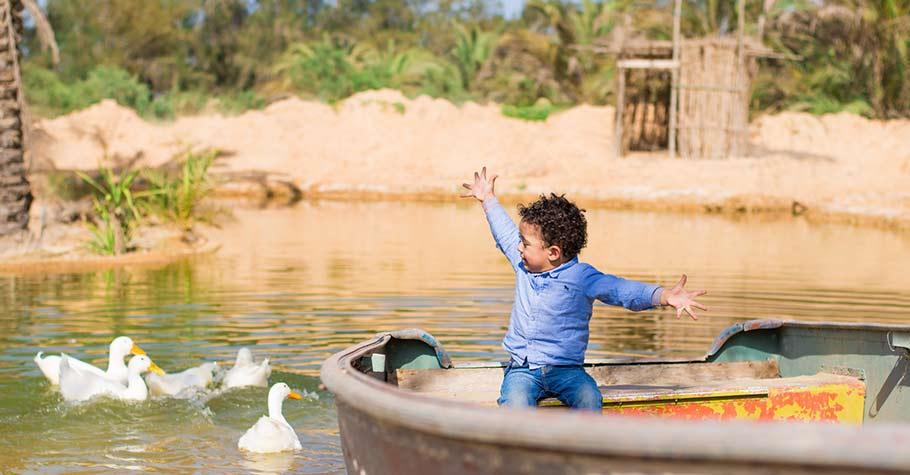 透過最貼近日常生活的溫暖故事,感受大自然四季的奇妙和變化,一起陪伴孩子的童年,創造最美好的回憶