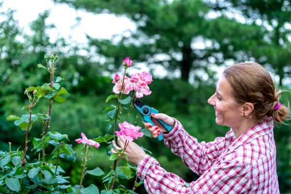 怎麼讓退休成為很優雅的事?翻轉4個觀念,過無憂日子
