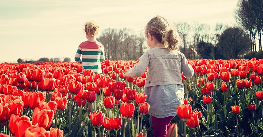 美感 藝術 不是用教的!而是要帶著孩子一起去體會