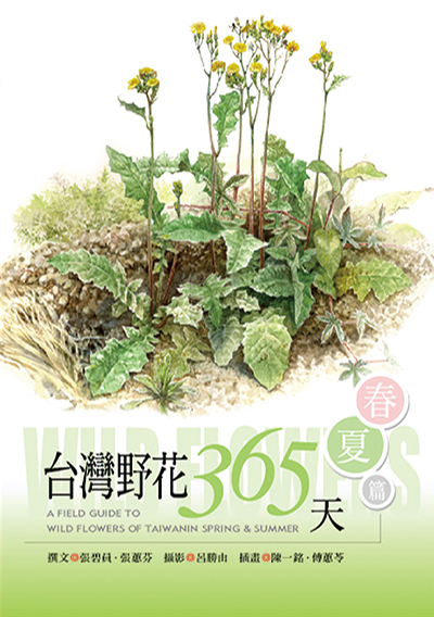 台灣野花365天-春夏篇
