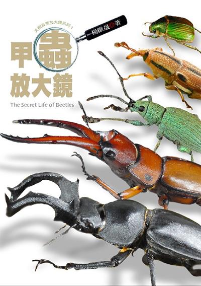 甲蟲放大鏡
