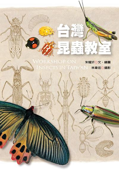 臺灣昆蟲教室