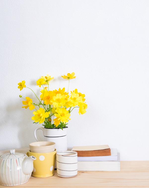 在家如何滋養身與心?